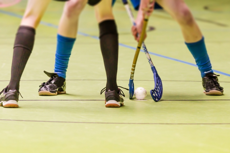 7942095-floorball-bully